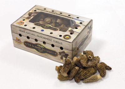 realizzazione packaging a Frosinone